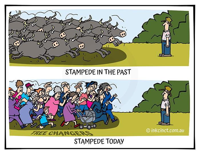 2021-222 Stampedes, TREE CHANGERS - MSC 06-Jul-21 copy
