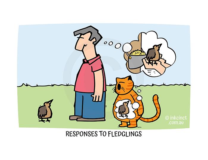 2021-352P Responses to fledglings, CATS BIRDS - MSC 05-Oct-21 copy