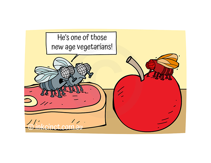 2021-363P He's one of those new age vegetarians, FRUIT FLY - MSC 08-Oct-21 copy